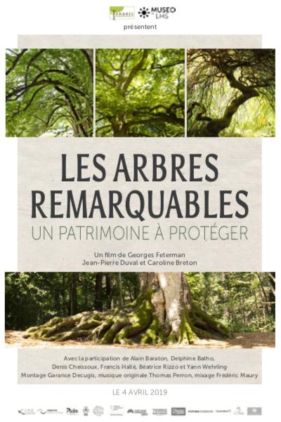 Affiche film arbres