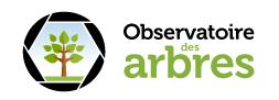 Observatoire des arbres