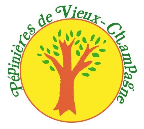 Logo pe pinie re 2